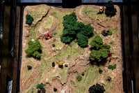 Clearcut Top View